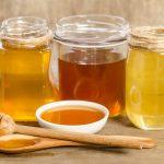 recolte de miel au domaine