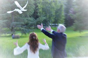 Mariage Domaine de Saint Paul : L'Envol des colombes