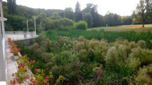espaces extérieurs Domaine Saint-Paul, vue sur les prairies