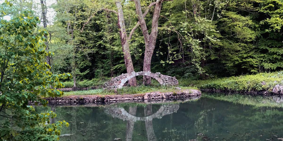 Étang, biodiversite au Domaine Saint-Paul