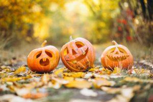 nos jardiniers préparent Halloween
